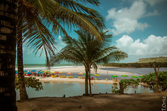 Praia Bela - Joo Pessoa - Brasil (Tania Ortiz Fotos) Tags: ocean brazil praia beach nature beautiful brasil landscape photography mar cool pretty natureza paisagem joopessoa bela nordeste praiabela wonderfulplace