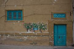 trompe l'il (=Mirjam=) Tags: flowers holiday wall painting graffiti iran traveling mei qom 2016 seeingtheworld nikond750 52in2016