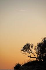 (Sebtaui2010) Tags: sunset sun sol contraluz atardecer sombra avion