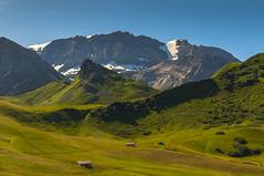 Schweiz 26072009 01 2048 (Dirk Buse) Tags: schweiz suisse wanderung berge mountain outddoor natur nature wiesen nikon d300 tamron 2875 kontrast sonne licht sicht landscape