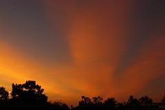 Sunrise 12 11 2014 001 (Az Skies Photography) Tags: morning red arizona sky orange cloud sun black phoenix yellow skyline clouds sunrise canon skyscape eos rebel gold dawn golden december salmon az 11 biltmore rise daybreak 121114 2014 phoenixaz arizonabiltmore t2i canoneosrebelt2i eosrebelt2i 12112014 december112014