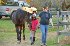 2014-11-11 (24) Veterans Day at Miss Nicole's (JLeeFleenor) Tags: photos photography missnicole croom md therapeuticriding ridinglessons kids kid youthactivities youthsports youth youngriders horses thoroughbreds equine equestrian cheval cavalo cavallo cavall caballo pferd paard perd hevonen hest hestur cal kon konj beygir capall ceffyl cuddy yarraman faras alogo soos kuda uma pfeerd koin حصان кон 马 häst άλογο סוס घोड़ा 馬 koń лошадь pink ottb instructor maryland