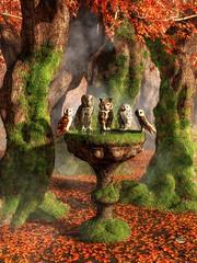 Owl Council (deskridge) Tags: autumn orange green fall moss birdbath meeting owl wise council perched wisdom mossy hornedowl judges snowyowl jury greyowl grayowl eskridge barnown danieleskridge owlcouncil