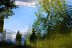 Un aprs-midi  la Schappe (Corinne Queme) Tags: park trees france reflection water eau silhouettes reflet arbres parc briancon hautesalpes schappe