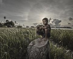 20140503-MIA_6918a (yaman ibrahim) Tags: morning boy sunrise kid malaysia rooster sabahan maiga