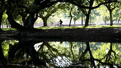 GOGREEN (fabio lf petry) Tags: trees light urban reflection green nature water bike dark portoalegre bicicleta cycle
