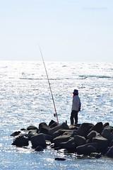 Fisherman - Corniche Jeddah (abdalmajeedTM) Tags: fish fishing fisherman nikon corniche jeddah saudiarabia ksa d5300