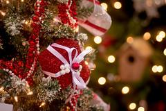 little package (raspberrytart) Tags: christmas red tree lights utah nikon bokeh ornaments present festivaloftrees d7100
