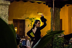 Olé (Hugo Cesar Gusmao) Tags: show españa canon rebel spain espanha culture t3 baile flamenco cultura bailarina bailaora espetáculo 1100d canoneos1100d