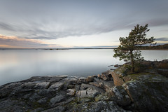 Boholmen - shoreline (- David Olsson -) Tags: longexposure sunset oktober lake seascape tree nature water landscape nikon october rocks sundown sweden outdoor cliffs le fir fx grad vr vnern lonetree d800 hammar vrmland 2014 1635 ndfilter blackglass 1635mm gnd skoghall lonesometree leefilters lenr boholmen bigstopper davidolsson 06hard 1635vr