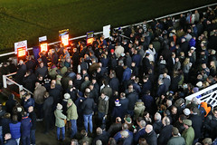AB4T7800.JPG (TowcesterNews) Tags: england history sports bar night lights northamptonshire racing crowds northants realale greyhounds greyhoundracing gbr firstmeeting towcester towcesterracecourse