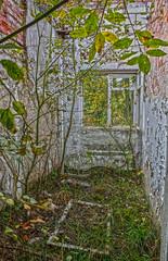 Living-room (FanFan Babii or just plain Buffan) Tags: abandoned window decay cz deserted windowsoftheworld beautifuldecay