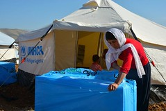 UNHCR News Story: Displaced Iraqis seek safety and aid in camps as winter falls (UNHCR) Tags: woman news tents women iraq help aid shelter information protection assistance unhcr visibility displaced displacement newsstory idps internallydisplacedpeople winterization internallydisplaced unrefugeeagency unitednationsrefugeeagency unitednationshighcommissionerforrefugees unhighcommissionerforrefugees suleymaniyah webstory30december2014