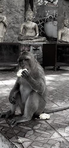 Monkey Mountain, Hua Hin, Thailand