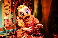Madame Daisy Fortuna (EverythingDisney) Tags: disney disneyworld daisy wdw magickingdom crystalball daisyduck petessillysideshow madamedaisyfortuna