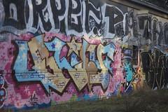 Blief (bringtwoswords) Tags: graffiti berkeley piece blief
