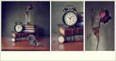 Despertando (pimontes) Tags: old rose del hojas book still nikon rosa antiguos paso bodegn dedos reloj slider libros reflexions despertador reflejos espejos tiempo despertar hss secas jarrn pimontes