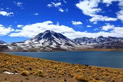 LAGUNA MISCANTI (Asterivaldo) Tags: chile sanpedrodeatacama antofagasta desiertodeatacama desertodeatacama atacamadesert lagunamiscanti asterivaldo