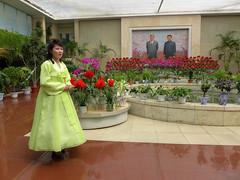 Kimjongilia Flower (Daniel Brennwald) Tags: korea kimjongil northkorea pyongyang dprk kimilsung nordkorea kimjongilia pjngjang