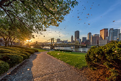 Petals fall to the ground at dawn on the North Shore of Pittsburgh (Dave DiCello) Tags: pittsburgh aerials pittsburghskyline downtownpittsburgh davedicello imagesofpittsburgh viewsofpittsburgh pittsburghprints pittsburghskylineimages aerialpittsburgh pittsburghfromtheair aerialviewsofpittsburgh