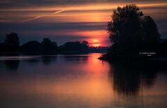Make an appearance (Ingeborg Ruyken) Tags: morning trees sky orange sun water sunrise river landscape dawn spring bomen flickr may mei lucht maas lente zon dropbox ochtend oranje meuse rivier 2016 empel zonsopkomst natuurfotografie 500pxs lentefilm16 weerspiegelingreflection