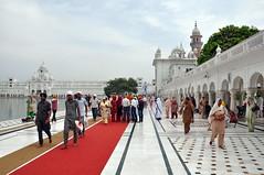 India - Punjab - Amritsar - Golden Temple - 220 (asienman) Tags: india sikh punjab amritsar gurudwara goldentemple harmandirsahib asienmanphotography