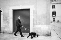 Dog Day (toletoletole (www.levold.de/photosphere)) Tags: street people bw italy dog man building fuji haus streetscene hund sw mann bari strase dogkeeper hundehalter strasenszene fujixpro2