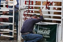 Blythewood Rodeo 2016-54 (Perry B McLeod) Tags: sc cowboys barrel bull racing bulls riding rodeo cowgirl calf saddle bronc blythewood roping ipra