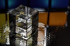 Acrylic Cube (WilliamND4) Tags: macro reflection wet nikon acrylic cube d750 tokina100mmf28atxprod tokina100mmf28lens