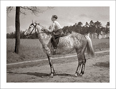Fashion 0268-41 - Can You Spot the Horse? (Steve Given) Tags: boy horse fashion familyhistory riding teen teenager socialhistory