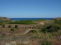 Menorca. Bini-mela. Jun. 16. 1 (joseluisgildela) Tags: menorca playas mediterrneo binimella camdecavalls