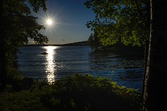 DSC_6300 (vargandras) Tags: lake water sun sunset tree pyhjrvi tampere hatanp sunstar suomi finland city