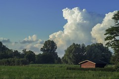house_sky (pocket_titan) Tags: trees cloud nature field clouds rural pasture