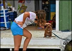 DSC_0498 (#PixbyHerb) Tags: pitbull americanpitbullterrier americanpitbull dog dogs doglover pixbyherb sadface