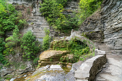 Gorge at Treman II (agladshtein) Tags: beautyinnature cny centralnewyork summer ithaca landscape nature newyork tompkinscounty tremanstatepark waterfall green sonya7r2 sony2470mmgmfe gorge