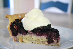 Blackberry Custard Pie 3 (one.juniper) Tags: pie fruit blackberries freshly picked fresh food photography foodie crust whipcream custard recipe homemade countryliving country cooking baking baker kitchen foodstaging staging styled foodstyling sauce preserves plated ontario canada blackberry berry dessert