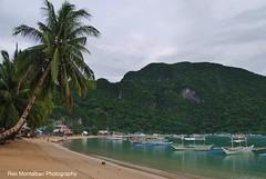 El Nido Palawan (Rex Montalban Photography) Tags: rexmontalbanphotography philippines elnido palawan beach palmtree