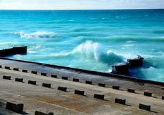 Wish I was here . . . (Dr. Farnsworth) Tags: lighthouse snow storm fall mi waves wind lakemichigan fernridge november2014