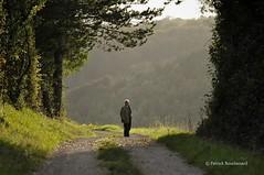 Spectacle / Scenery (patoche21) Tags: light people sunlight france countryside nikon 21 lumière burgundy streetphotography paysage bourgogne campagne gens 70200mm d300 côtedor scènederue rurallandscape changey paysagerural capturenx2 patrickbouchenard