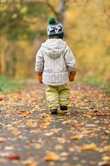 Hugo / Autumn 2014 (Mikko Miettinen) Tags: autumn boy orange baby colors yellow finland outdoors helsinki colours child hugo littleboy caucasian 2014 woolhat