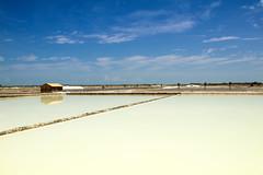 (DeepSane) Tags: brazil brasil salinas tibau riograndedonorte saltevaporationpond