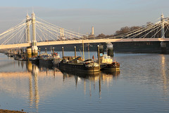 "Albert Bridge • <a style=""font-size:0.8em;"" href=""http://www.flickr.com/photos/89972965@N03/15743039899/"" target=""_blank"">View on Flickr</a>"