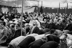 Iranian men praying during Friday prayers in Tehran (damonlynch) Tags: people blackandwhite bw man reflection male men public senior religious person togetherness concentration blackwhite persian adult iran masculine muslim islam faith prayer religion pray praying middleeast places virtue human elderly reflective editorial shia conservative aged iranian tehran spiritual adults oldage humanbeing humans symbolic moral mullah mankind middleeastern allegiance humanbeings solemn clergy shiite righteous maturity malebonding cleric seniorcitizen chaste ruhani workingtogether attentiongrabbing virtuous fiftyish shiaislam akhoond