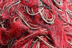 The net (paul indigo) Tags: fishing graphic rope colourful nets paulindigo