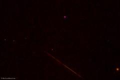 Geminids Meteor (BiteYourBum.Com Photography) Tags: uk greatbritain england apple shower worthing westsussex unitedkingdom gb canonef1740mmf4lusm meteor allrightsreserved geminids 2014 ipad focusstacking macpro canonefs60mmf28macrousm biteyourbum canoneos7d appleipad lrenfuse dawnandjim canonspeedlite430exii sigma50500mmf4563dgoshsm loweproprorunner350aw lightroom5 biteyourbumcom camranger copyright2014biteyourbumcom geminidsmeteorshower2014