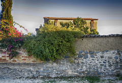 Pera 6 (Polis Poliviou) Tags: nature field countryside cyprus cipro polis zypern pera kypros chypre chipre kypr cypr cypern  kipras asinou ciprus republicofcyprus envirment    poliviou polispoliviou   cyprusinyourheart    sayprus chipir wwwpolispolivioucom yearroundisland cyprustheallyearroundisland polispoliviou2014