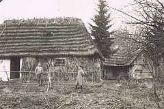 The Straw Days (TrueVintage) Tags: bw house farm cottage straw haus oldphoto sw then past riet foundphoto stroh reet vintagephoto hte strawhut reetdach strohdach strawroof vintagehouse frher strohhte rietdach