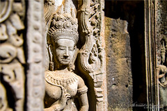 Cambodia (Qicong Lin(Kenta)) Tags: travel color colour statue nikon cambodia cambodian buddha culture siem lin angkor interest 2014   d600 kampuchea qicong reab