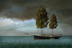Tree Sheets To The Wind (Matt West) Tags: ocean sea storm tree green boat leaf sailing ship sail mast concept