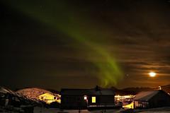 Northern Lights Aurora Borealis, Sommaroya Island, Norway (David Alexander Elder) Tags: cruise november sky david norway circle lights norge search arctic aurora elder fred alexander polar northern olsen borealis tromso boudicca 2014 in aurorae sommaroya